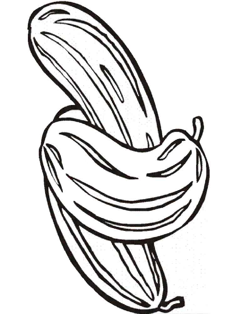 Cucumber coloring pages Download