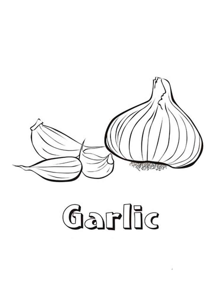 Garlic coloring pages Download