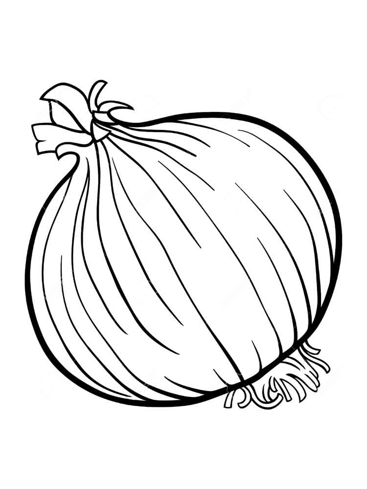 vegetables onion coloring page 5