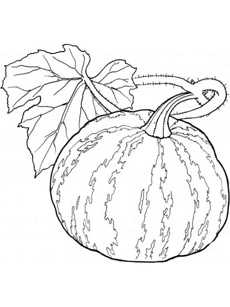 Pumpkin coloring pages Download