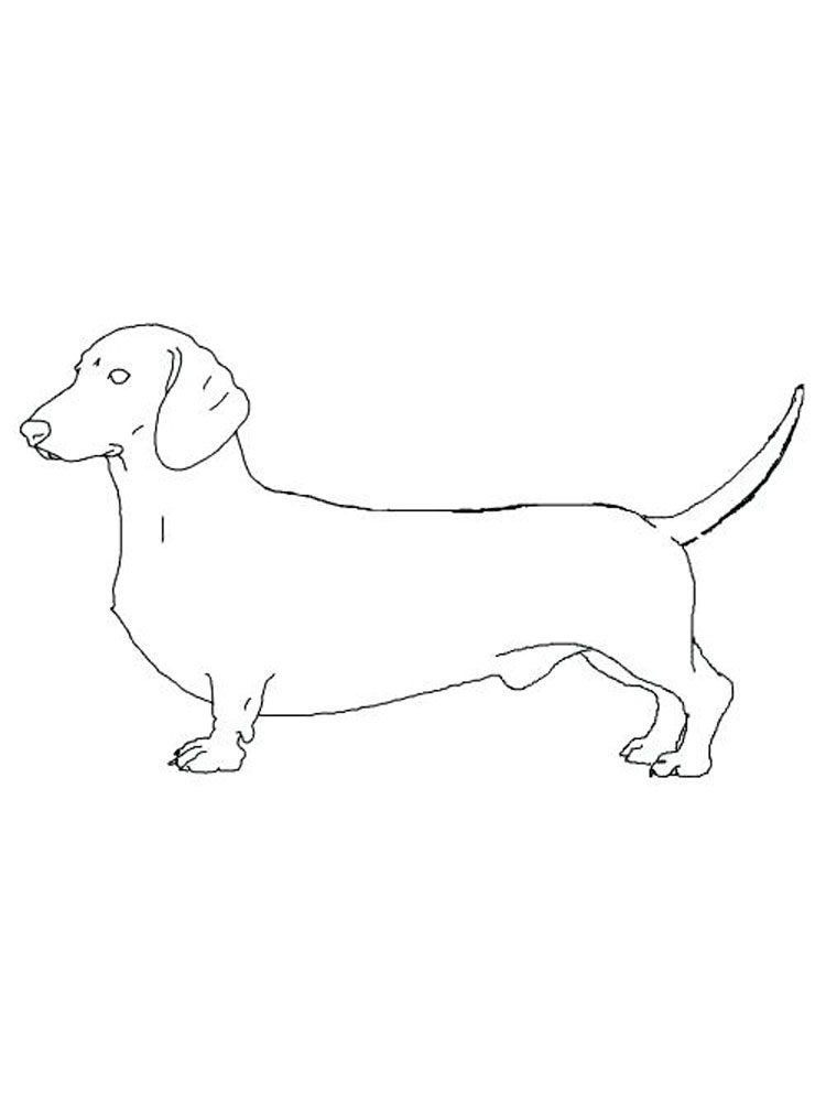 Free Dachshund coloring pages. Download and print ...