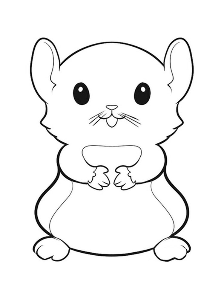 Baby Hamster Coloring Pages Hamster coloring pages Download and print Hamster