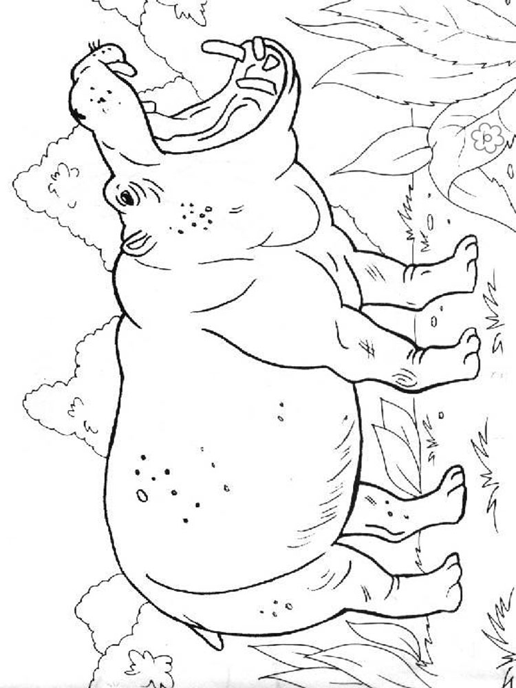 Hippopotamus coloring pages Download and print