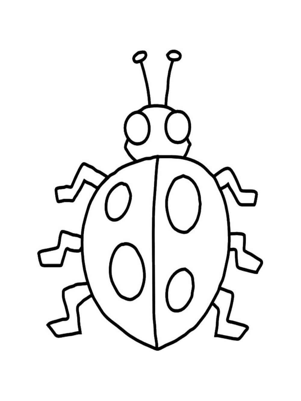 Free Ladybug coloring pages. Download and print Ladybug ...