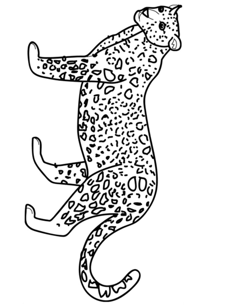 Leopard coloring pages. Download and print Leopard ...