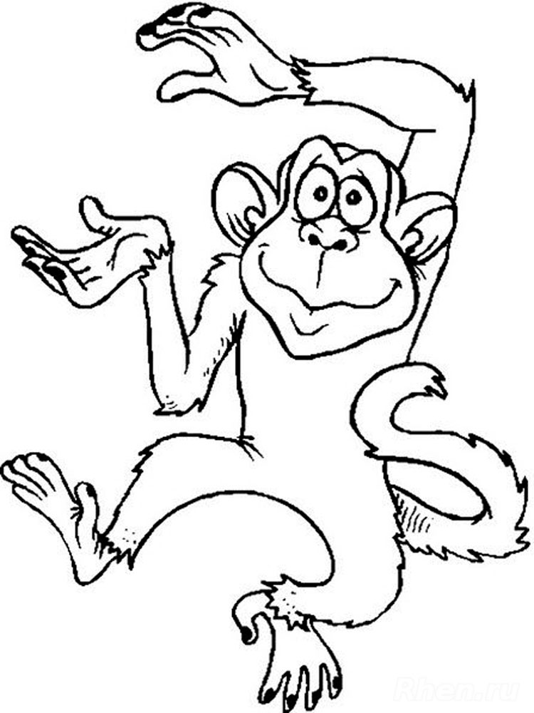 Monkey coloring pages. Download and print Monkey coloring pages