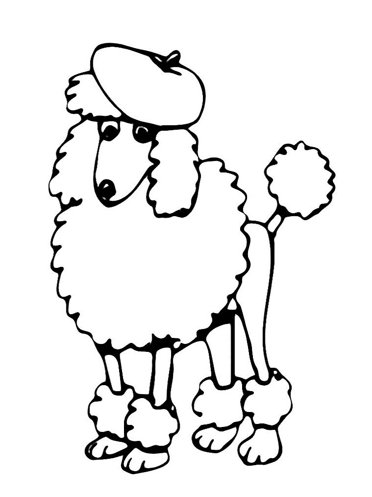 Free Poodle Coloring Pages Download And Print Poodle Coloring Pages