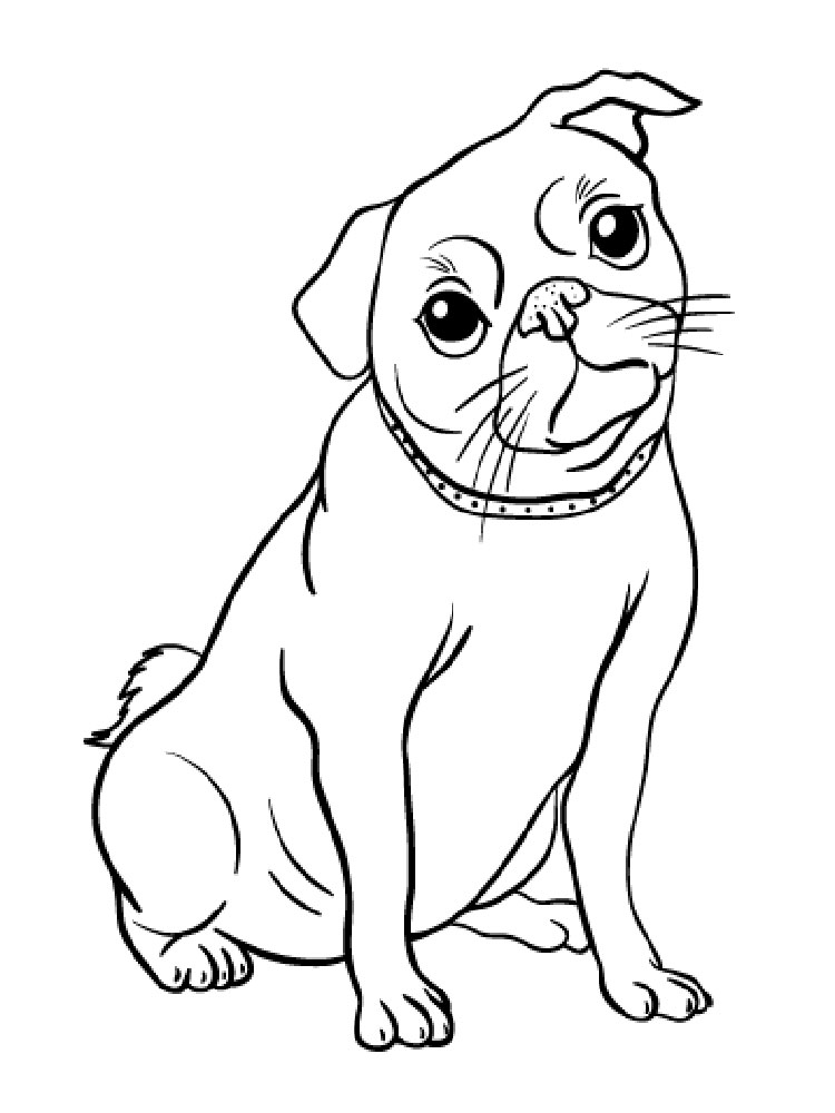 Free Pug coloring pages. Download and print Pug coloring pages