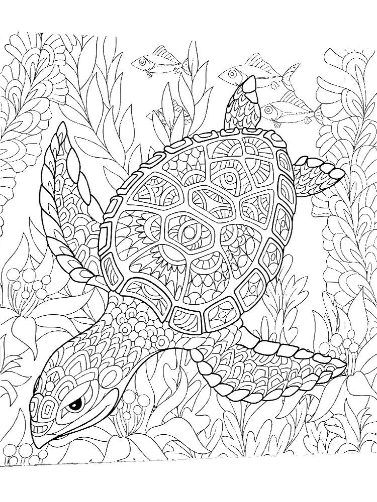 - Free Sea Turtle Coloring Pages. Download And Print Sea Turtle Coloring Pages