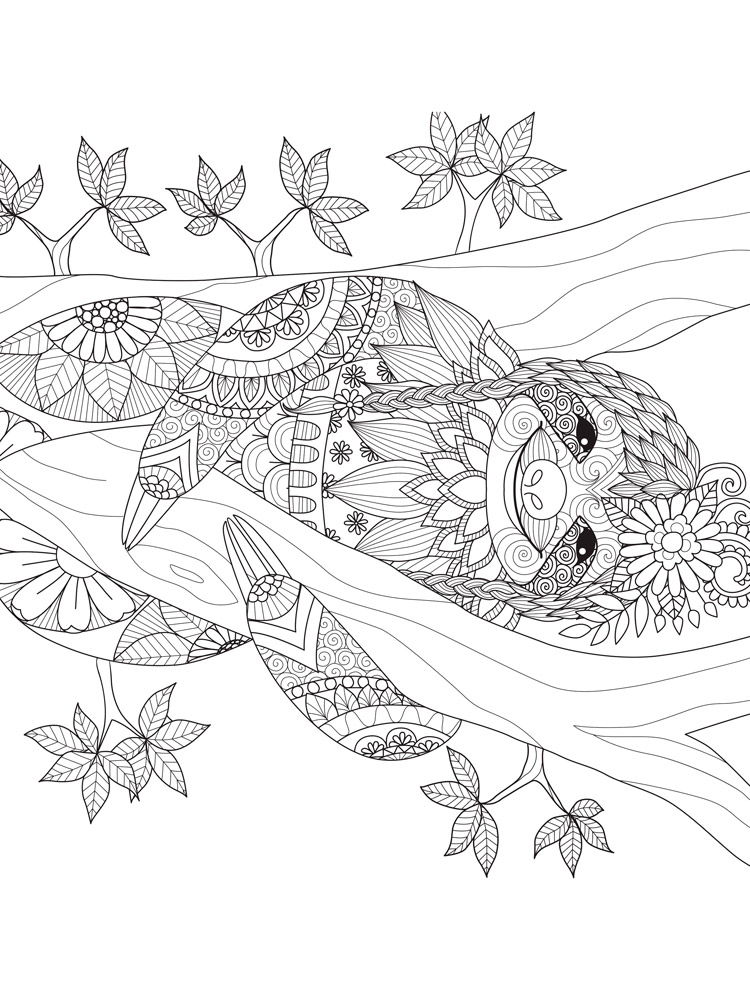 Free Sloth Coloring Pages Download And Print Sloth Coloring Pages