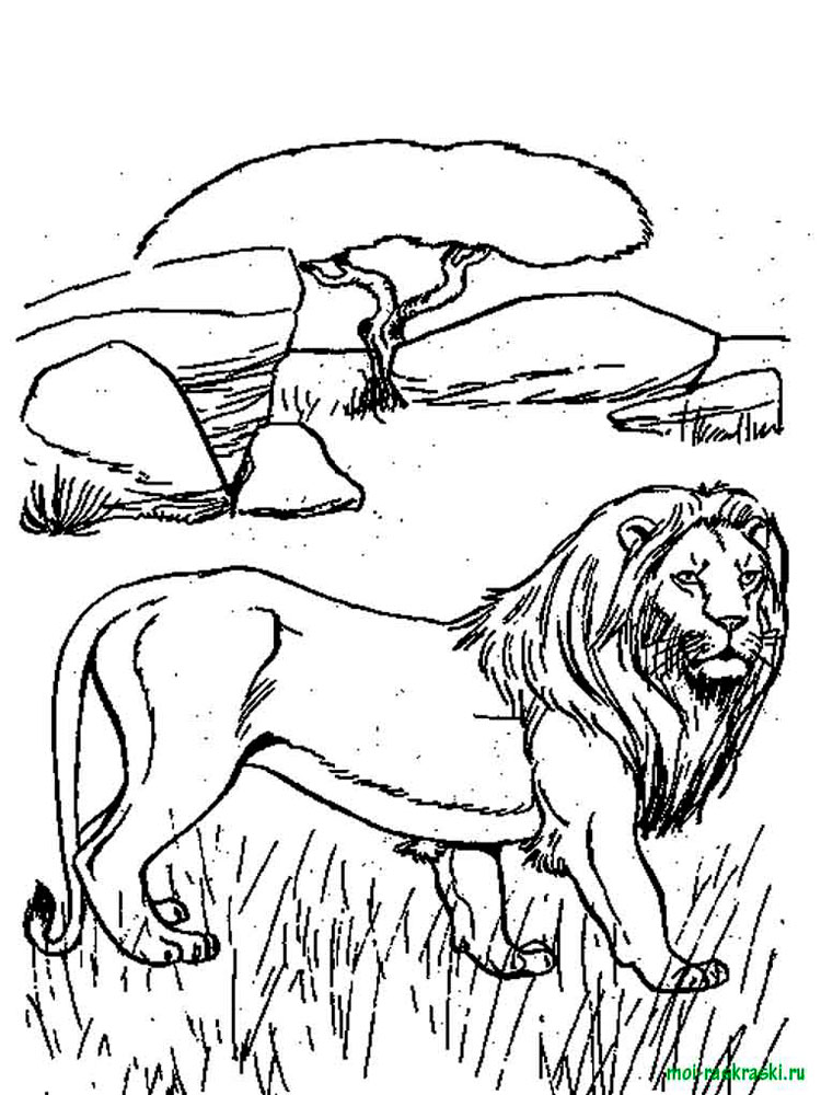 Free Wild Animal coloring pages. Download and print Wild ...