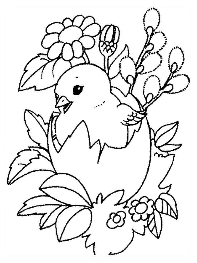 baby chick coloring pages download and print baby chick coloring - Coloring Packets