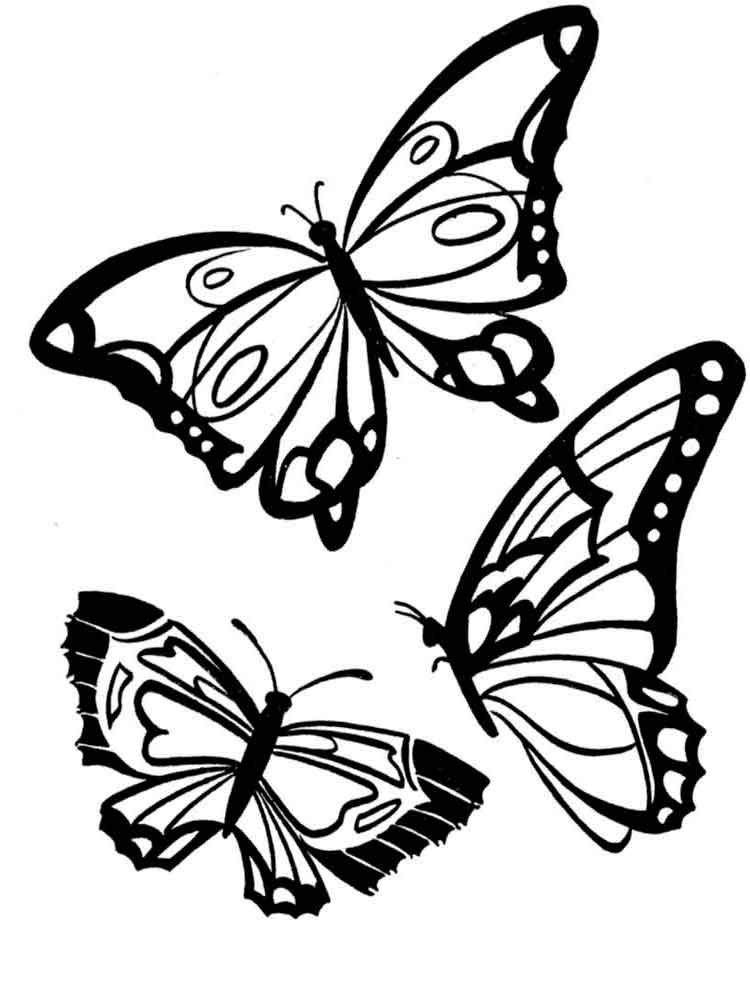Butterfly coloring pages Download