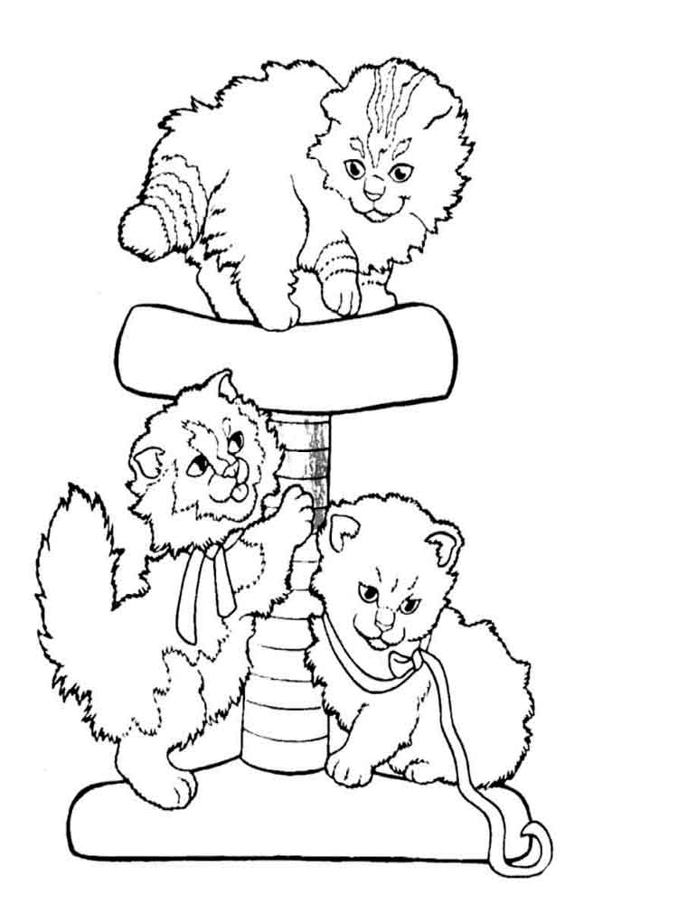 coloring pages of animals cats - photo#6
