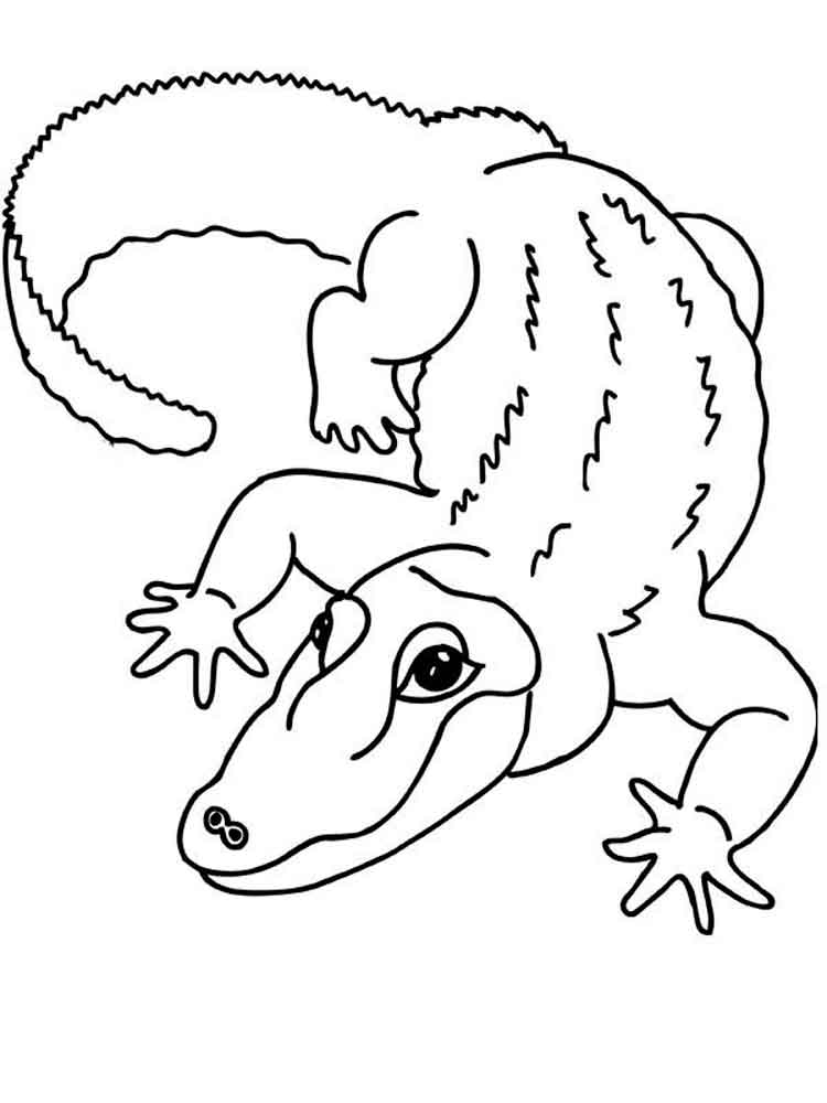 crocodile coloring pages to print