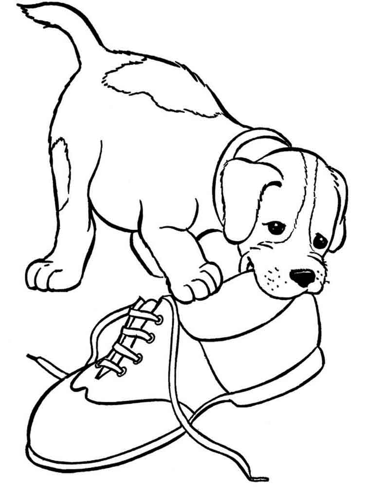 Dogs coloring pages. Download and print dogs coloring pages