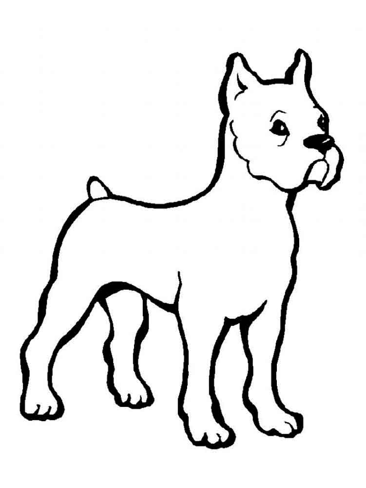 Free Coloring Pages Dogs And Cats