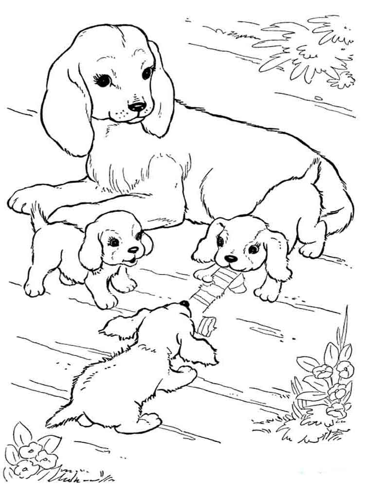 Coloring Pages Animals Dogs 5