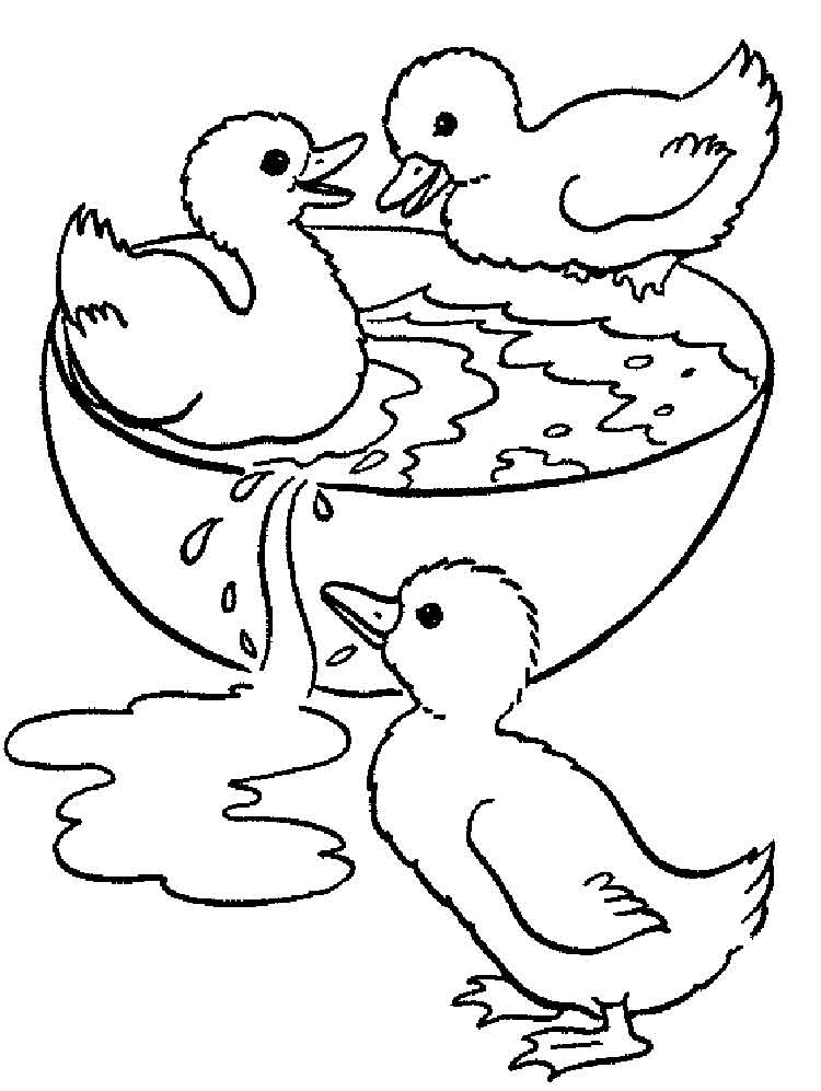 Duck Coloring Pages Download And Print Duck Coloring Pages