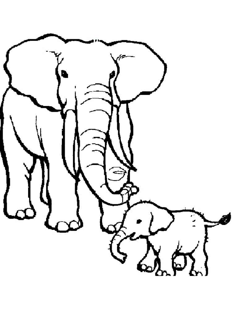 Elephant coloring pages Download