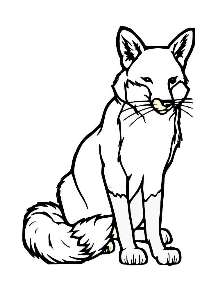Fox coloring pages Download and print fox coloring pages