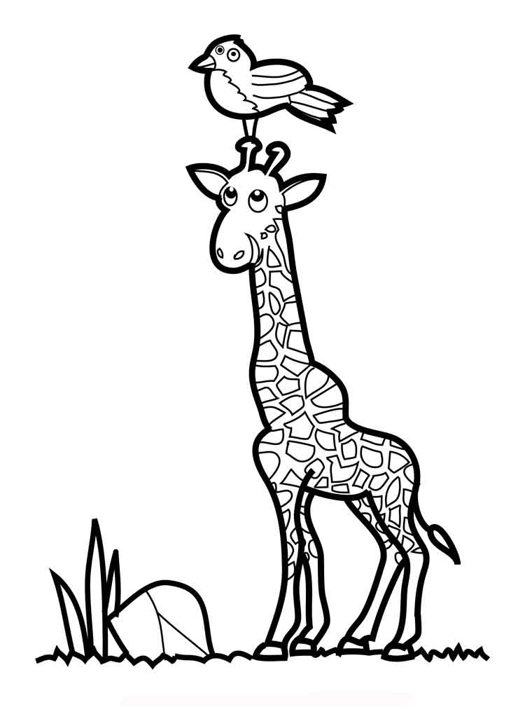 Giraffe coloring pages download and print giraffe for Animal coloring pages giraffe