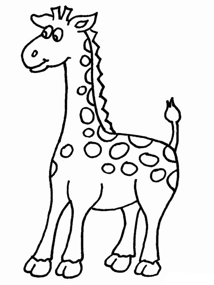 Giraffe coloring pages Download and print giraffe coloring pages