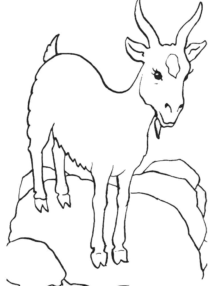 Goat coloring pages Download and