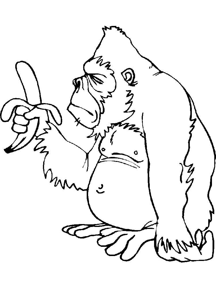 Free Gorilla coloring pages. Download and print Gorilla ...