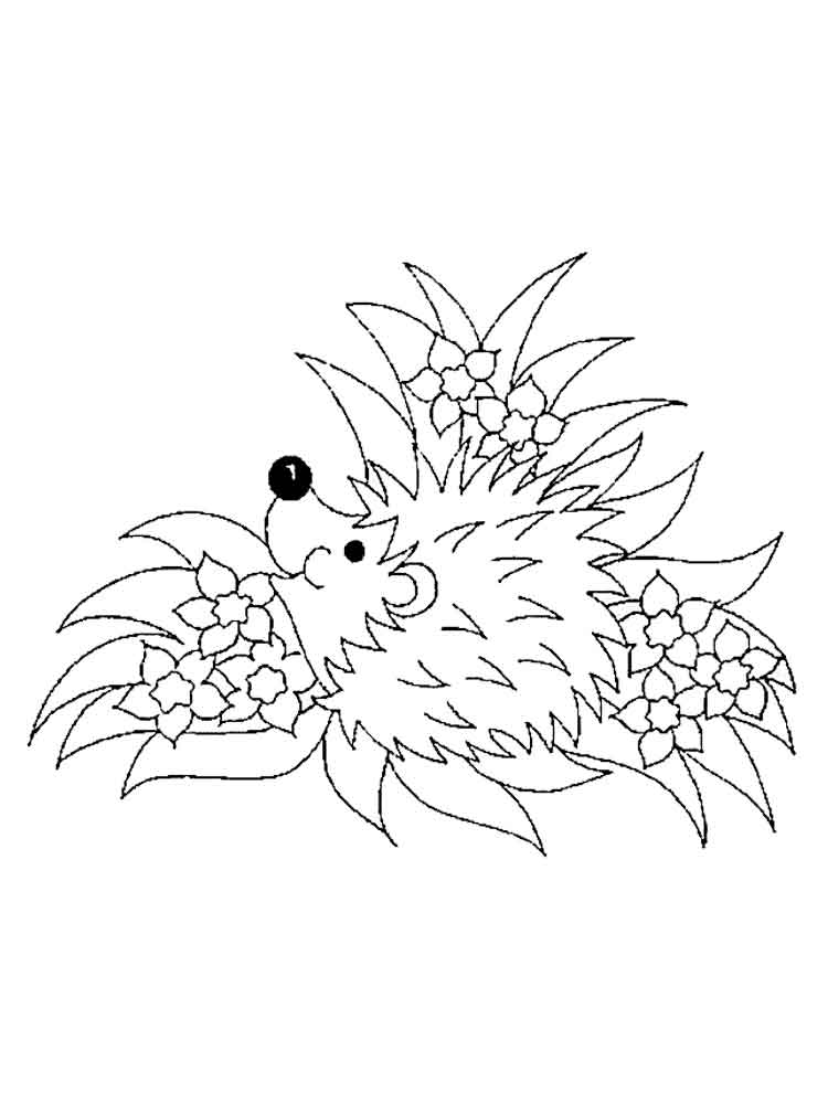 Hedgehog coloring pages Download