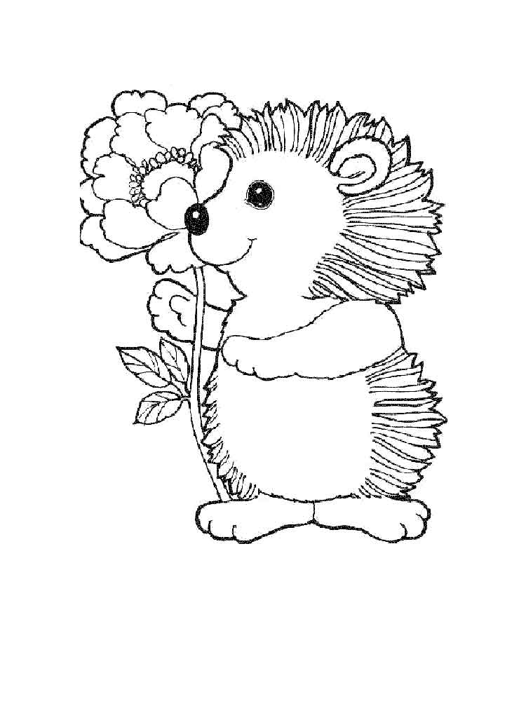 Hedgehog Coloring Pages Download And Print Hedgehog And Coloring Pages
