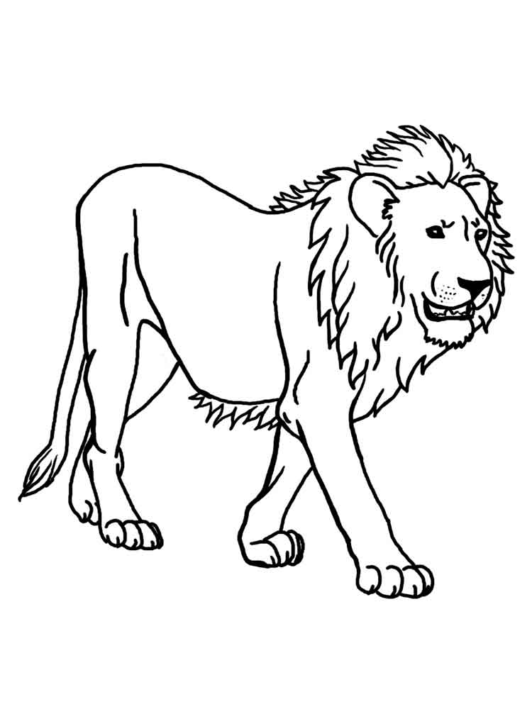 lion coloring pages. download and print lion coloring pages - Bionicle Coloring Pages Printable