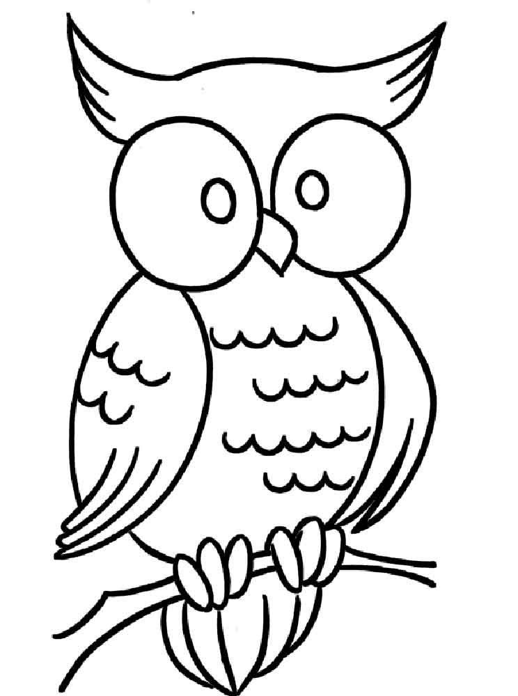 Owl Coloring Pages Download And Print