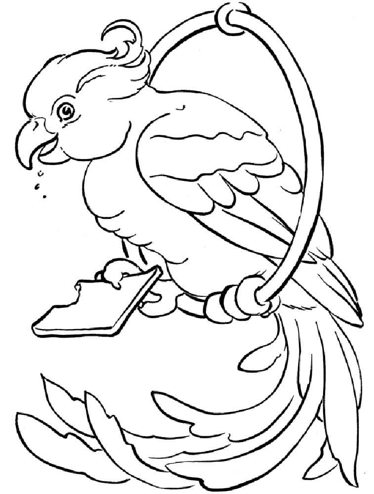 animal coloring pages parrot printable coloring pages design