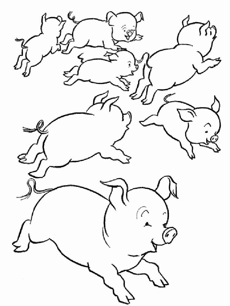 animals pig coloring pages 16 - Pigs Coloring Pages
