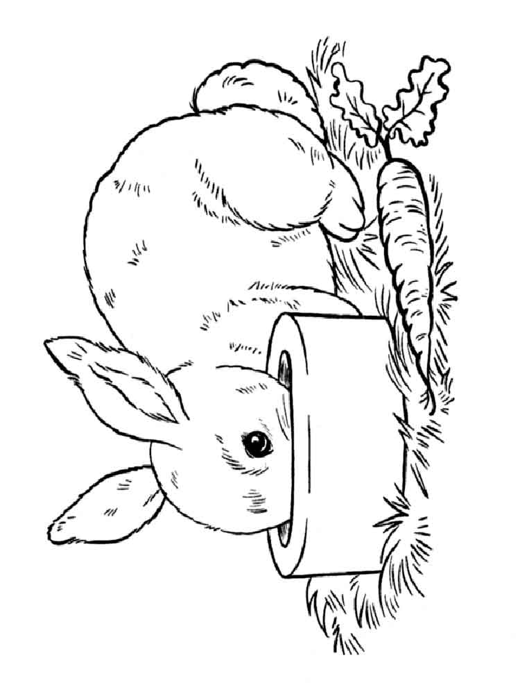 rabbit burrow coloring page coloring pages