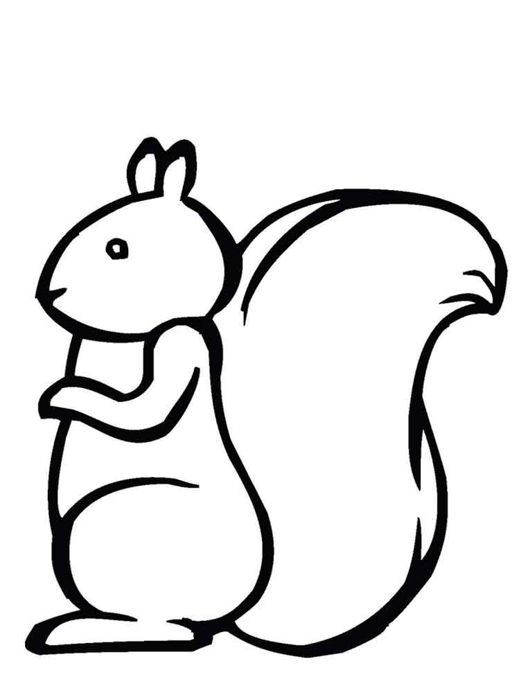 Squirrel coloring pages. Download and print squirrel coloring pages
