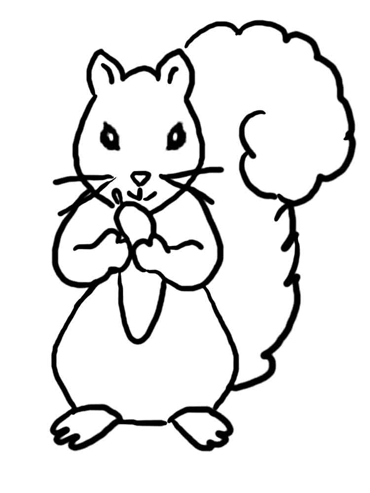 ... Coloring Pages Animals Squirrel 15 ...