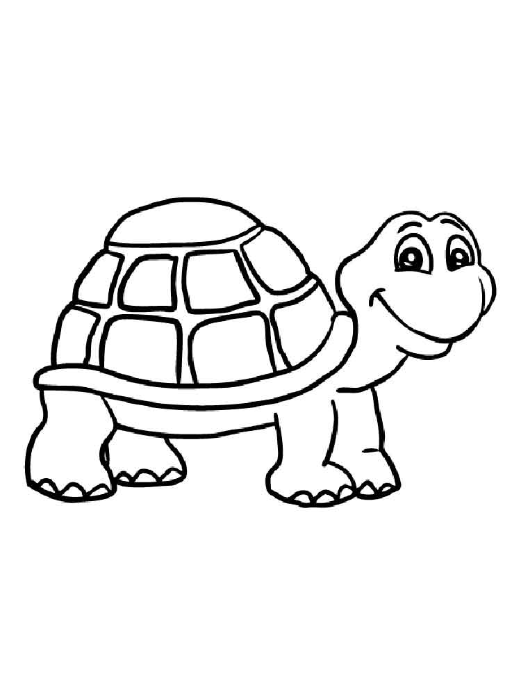 Turtles Coloring Pages Download And Print Turtles
