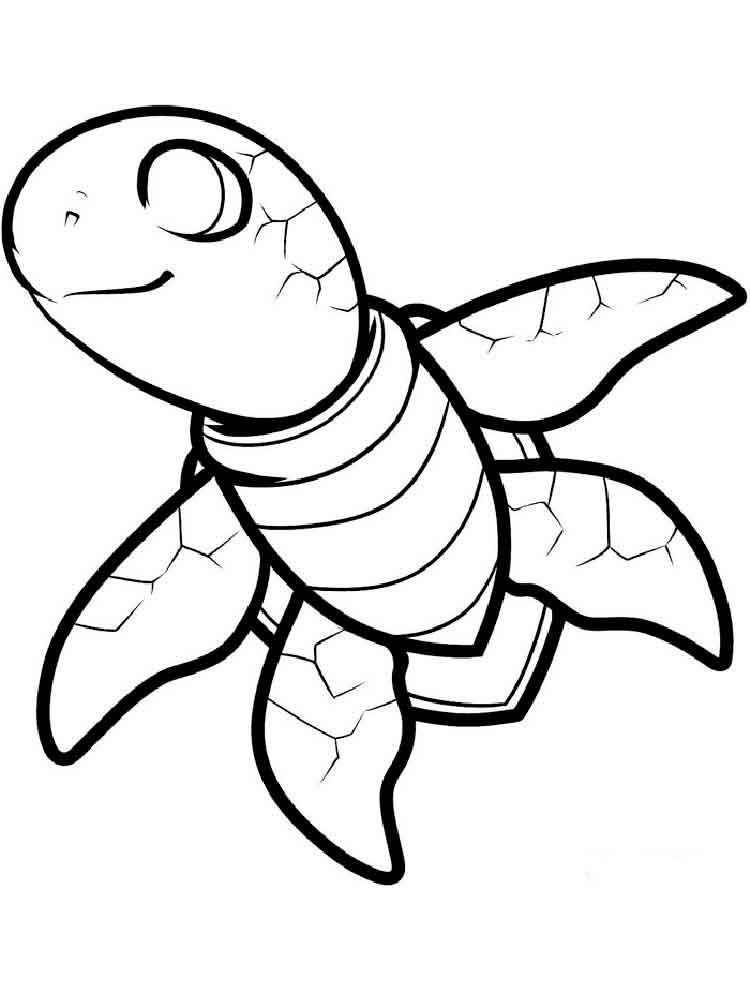 Turtles coloring pages download and print turtles for Turtle coloring pages