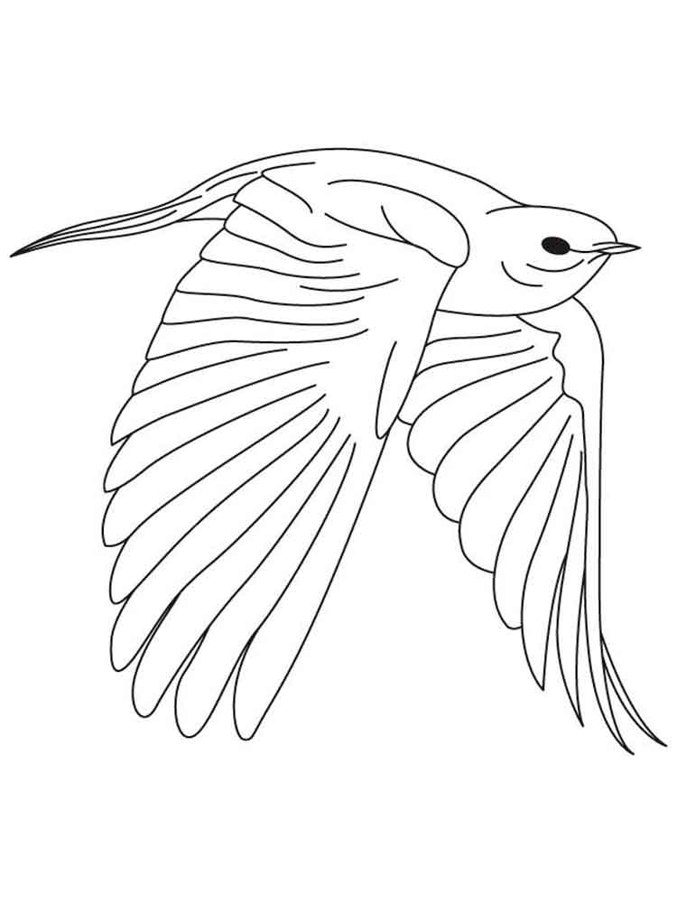 It is a graphic of Soft Bluebird Coloring Page