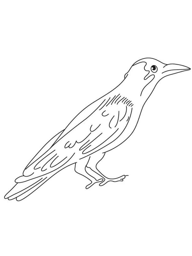 Crows Coloring Pages Download And Print Crows Coloring Pages