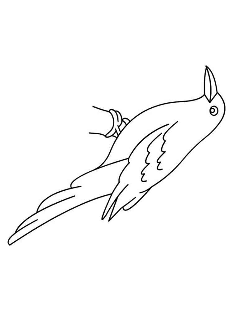 Crows coloring pages Download