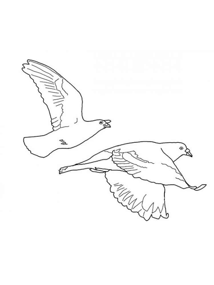 Doves Coloring Pages Free Coloring Pages Coloring Page