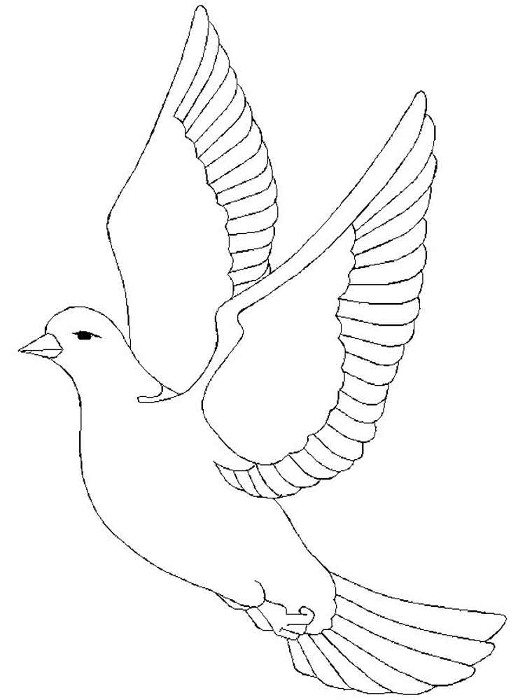 Dove coloring pages download and print dove coloring pages - Comment dessiner une colombe ...