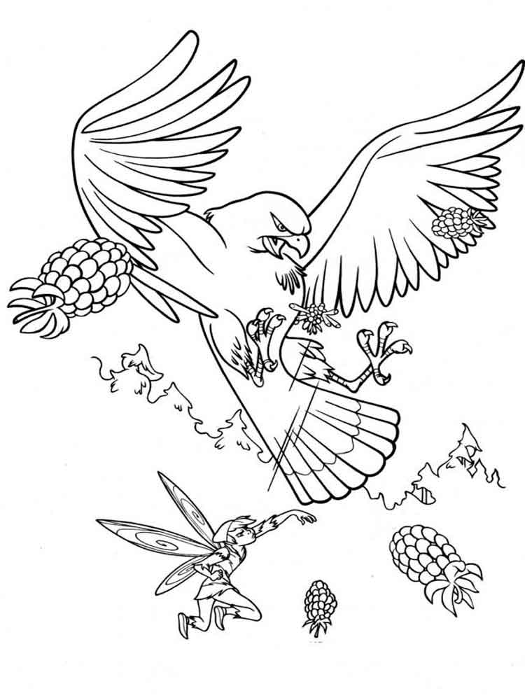Eagle coloring pages Download and print Eagle coloring pages
