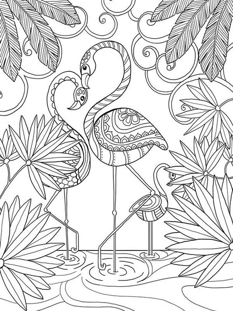 Flamingo coloring pages. Download and print Flamingo coloring pages
