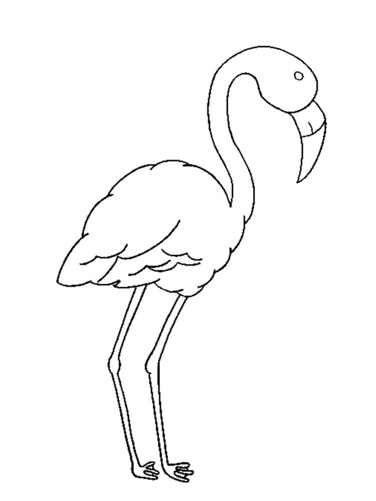 Flamingo coloring pages download and print flamingo coloring pages flamingos birds coloring pages 18 pronofoot35fo Images