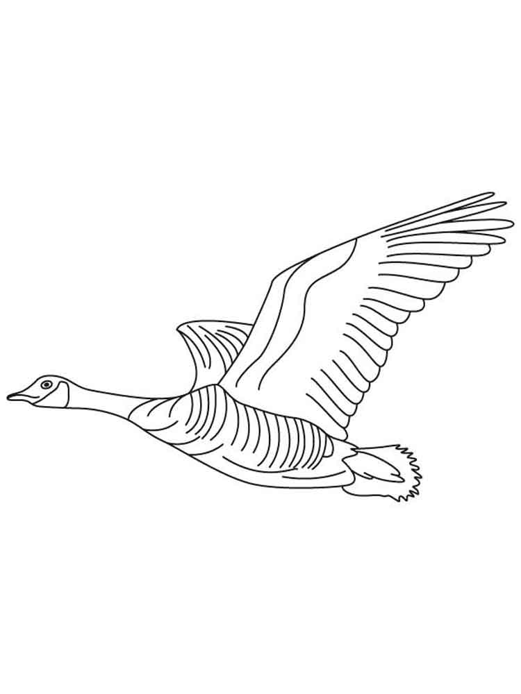 Gooses Birds Coloring Pages 6