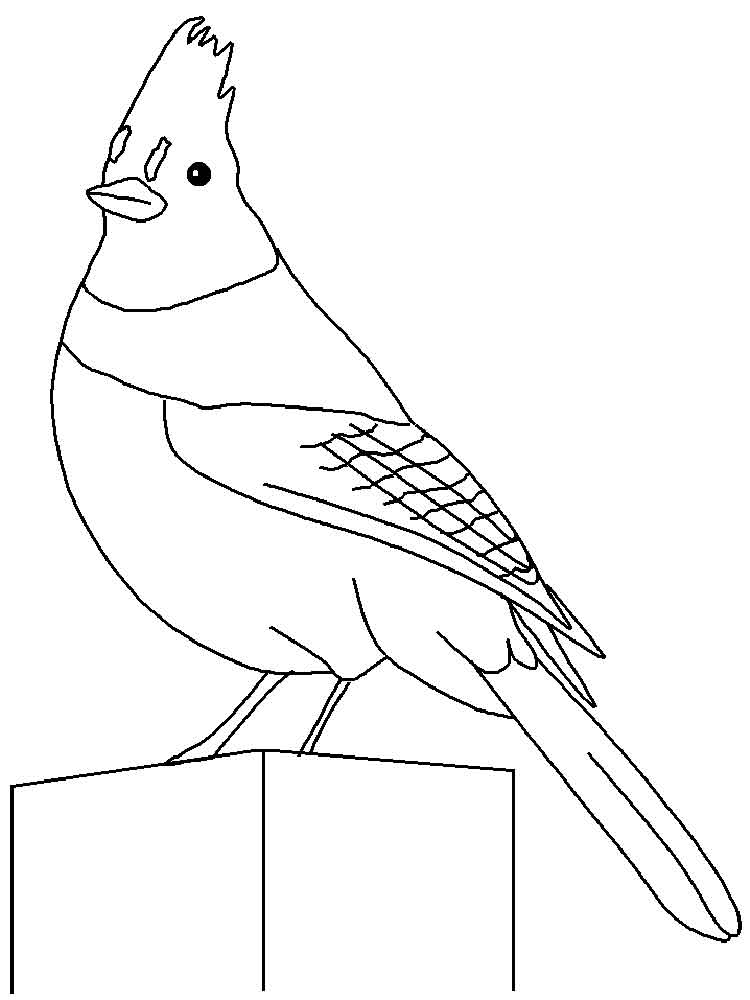 coloring pages jayjay - photo#32